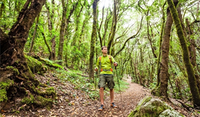 Study: Walking in nature makes people happier